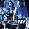 CSI:NY S7 #11 To What End? ピエロの殺意