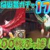 【ドラプロ】巌窟の焔嶽鷲ガチャ 176連!ガチャチケット800ぶっぱ!!