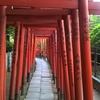 根津神社と人気の散歩道を歩いてみた【東京・谷根千】