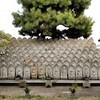 【広島、尾道】『善勝寺』に行ってきました。国内観光 国内旅行 女子旅 主婦ブログ