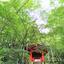 箱根に行きました