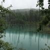 美瑛 曇天 青い池