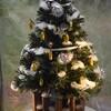 さなぎのクリスマスツリー