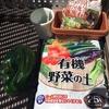 知識ゼロからはじめるベランダ菜園生活【種まき編】