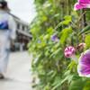 着物で古都を歩く女子旅なら岡山・倉敷はいかがですか?