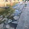 都賀川で散歩