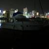 2017年6月3日旧港深夜釣行、撃沈。