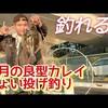 """""""【霜月の乗っ込みカレイ】良型マコガレイを釣って食う!カレイの刺身姿盛り!東京湾陸っぱりin神奈川"""" を YouTube で見る"""