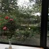 【ドライブ旅行記②】福岡→別府→由布院宿泊〜散策