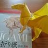 折り紙は頭と手先の運動、好きな子供にはどんどん難しい本を