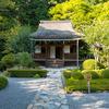 建礼門院命名の紫葉漬けの発祥の寺「寂光院」