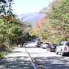 【束草】行楽シーズンは大パニックの雪岳山国立公園