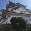 隠れた観光地「岸和田城」は魅力いっぱい!入場料、アクセス、駐車場など