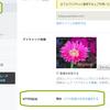 こちらのブログも『HTTPSへ移行』しました。やり方はとても簡単です!
