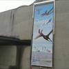 【古生物イベント紹介】空にいどんだ勇者たち(群馬県立自然史博物館)
