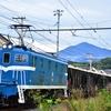 秩父鉄道の貨物列車の撮影に行ってきました (はしご撮り)