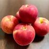長野県産「夏明(なつあかり)」は夏のりんご