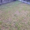 家を建てるまでの草の管理はどうすべきか?