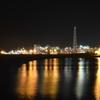 苫小牧東港でナイトロック【活性高くて入れ食いに近い】メンバーの釣果報告!