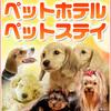 犬猫ペットホテル/ペットお預かり/塩釜/松島