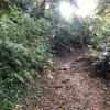 【アラ還さんぽ】険しい山道を抜けたその先には?事実はこの動画の中で。