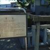 下町のお散歩。葛飾区立石と堀切菖蒲園。(2007年6月の小旅行)