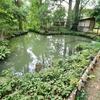 小立野口の池(仮称)(石川県金沢)