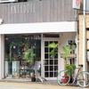【ANTIDOTE】静岡おすすめグリーンショップはココです!【多肉植物・塊根植物・観葉植物】