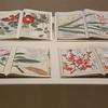 ■「挿絵本の楽しみ」《本草図譜》から広がる博物学の世界