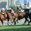 札幌記念2016予想オッズとデータ分析(傾向)と出走予定馬※レース動画あります。