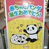 赤ちゃんパンダ誕生おめでとう♪