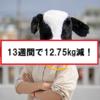 【ダイエット】13週間で体重12.75kg減に成功!