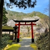 春の京さんぽ 白龍園 春の特別公開から鞍馬寺・貴船神社へ