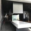 【新オープンホテル】リバーサイド ステイをもっともっと楽しむ水上タクシー@「ザ・ゲートホテル両国 by HULIC」(3)