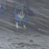 #064 大雪