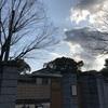 目から鱗 東京の京都チックな清澄庭園