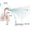 COVID-19は空気感染という見方。Science誌からの知見