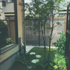 雨の日の植栽下見