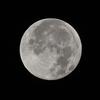 🌕異国の満月🎢この時期に海外出張④