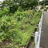法面の草刈り 0528