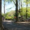井の頭公園でスワンボートで遊び、リスたちと触れ合う時間でしたー