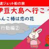 伊豆大島・椿まつりに行こう!【行動編②】2020年02月15日