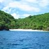 ヘアケアにはココナッツオイル。無人島に3つだけ、コスメを持って行くとしたら?