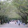9月の陵南公園に行ってきました