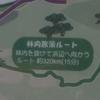 【坊勢島】レンタルサイクルで島散策※悲報