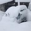 今日のえげつない雪との闘い…ジョセササイズの記録