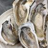 札幌で牡蠣を食べる!鮮度と価格に満足できるイートイン可能な魚屋とは!?