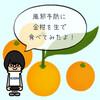 【風邪予防】冬が旬の金柑を皮ごと丸かじり!
