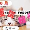 ブログ開設から5ヶ月経過!PV数は?【運営報告】17/10