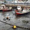 ウルグアイで前例のない奇妙な現象:海が消えた日 - Elonce.comより